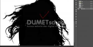Cara Cepat Seleksi Detail Rambut Dengan Photoshop-6
