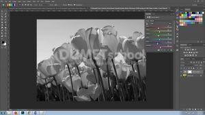 Mengedit Layer Tertentu Pada Software Pengolah Gambar Adobe Photoshop Part 2