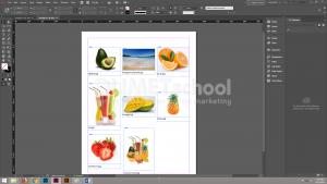 Cara Menyusun Gambar Katalog Dengan Cepat di Adobe Indesign