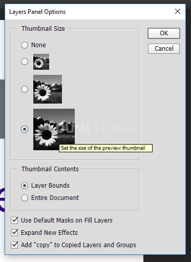 Cara Merubah Icon Layer Pada Software Pengolah Gambar Adobe Photoshop